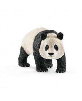 Schleich Reuzenpanda, Mannelijk
